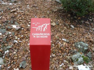 Pico Rocigalgo;Cascada Chorro,Cabañeros; puente del pilar cerezos en flor castillo de coca